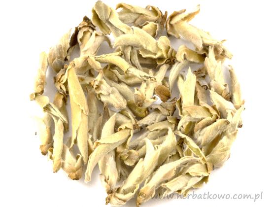 Herbata biała Ya Bao Wild Tea Buds