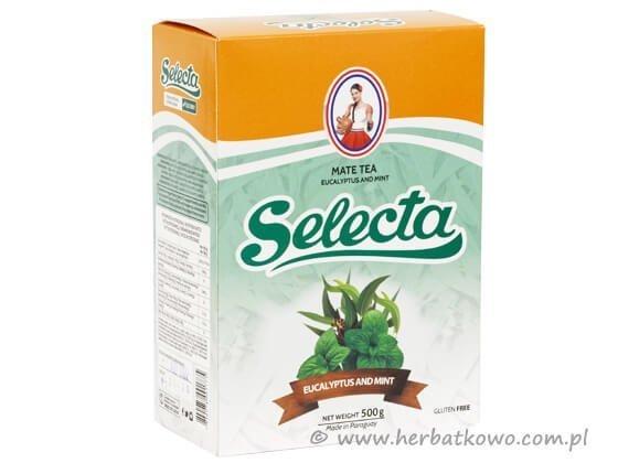 Yerba Mate Selecta Eucalyptus Mint 0,5 kg