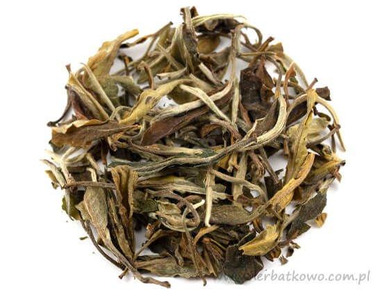 Zielona herbata Green Snow Buds